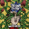 The Story So Far - What You Can`t See