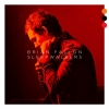 Brian Fallon - Sleepwalkers