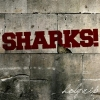 We Were Sharks - Holy Rip!