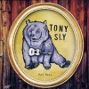 Tony Sly - Sad Bear